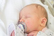 JULIE MÁCHOVÁ se narodila v úterý 1. května mamince Markétě Novákové z Hartenštejnu. Měřila 49 cm a vážila 3,44 kg.
