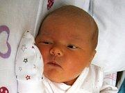 TEREZKA PÍTOVÁ se narodila Michaele a Františkovi Pítovým z Doks dne 28.11.2016. Měřila 49 cm a vážila 3420 g.