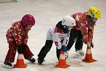 Jablonecký hokejový klub se mohl pochlubit jednou z největších účastí v republice.