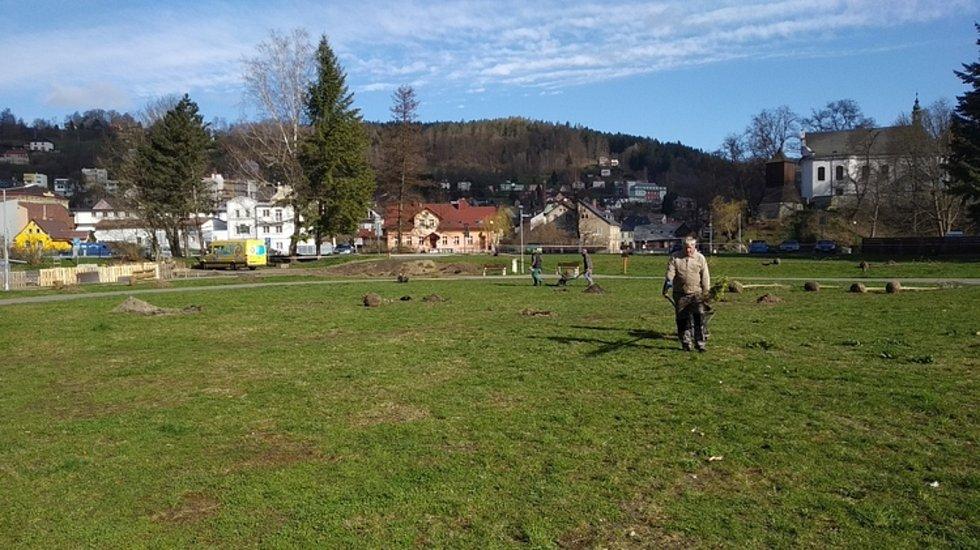Nová výsadba stromů se stala prvním krokem při úpravě železnobrodského areálu.