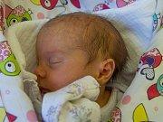 ZUZANA KŘÍŽOVÁ se narodila v neděli 28. května mamince Zuzaně Mejzrové z Hodkovic nad Mohelkou. Měřila 43 cm a vážila 2,33 kg.