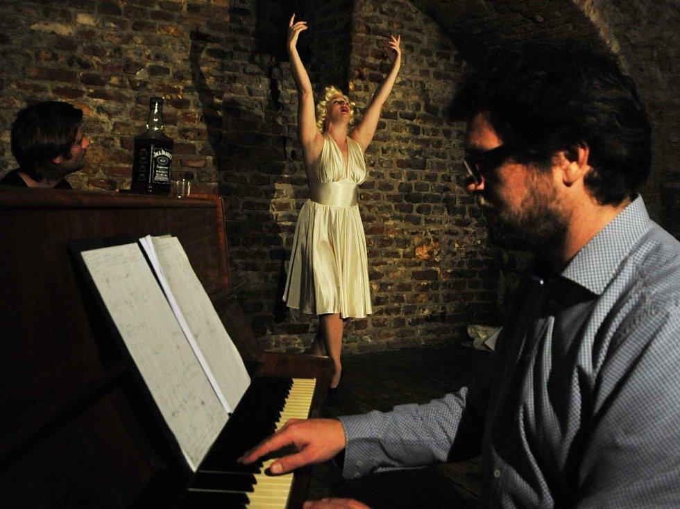 Titulní postavu v divadelním představení Spal jsem s Marilyn Studia DAMÚZA zahraje okouzlující Anna Schmidtmajerová. ocirkusovým souborem Cirk La Putyka. Kromě účinkování v Národním divadle má za sebou také