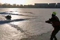 Hasiči pomáhali muži, pod kterým se prolomil led.