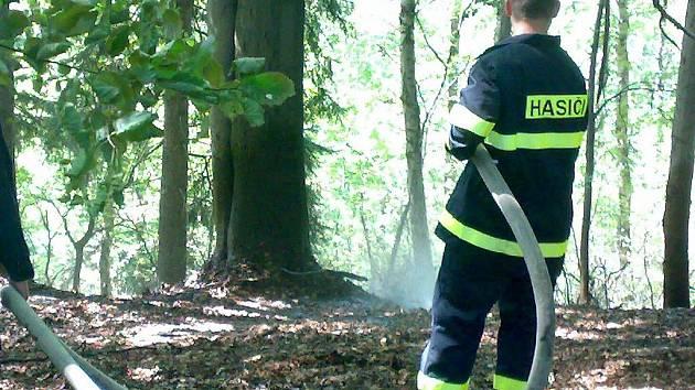 Sbor dobrovolných hasičů Rádlo. Hašení požáru lesního porostu.