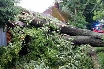 Výjezd speciálního technického kontejneru si vyžádal pád vzrostlého stromu na dva objekty v ulici Ještědská v Liberci.