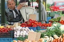Nákupní košík Deníků - zelenina. Ilustrační obrázek.