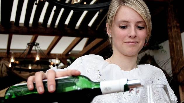 Nákupní košík Deníků - víno. Ilustrační obrázek.
