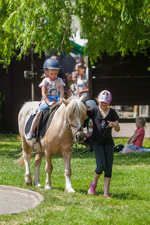 Tradiční Rychnovské slavnosti proběhly 26. května v Rychnově u Jablonce nad Nisou. Na snímku je jízda na koni.