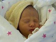 KRISTÝNA SCHRANKOVÁ se narodila v pondělí 29. května mamince Lence Vondráčkové. Měřila 49 cm a vážila 2,84 kg.