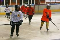 Letní hokejová škola v Jablonci