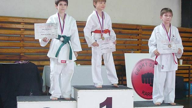 NA STUPNÍCH VÍTĚZŮ. Viktor Čermák získal ve své kategorii kumite zlatou medaili.
