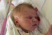 VÍT NOVOTNÝ se narodil v pondělí 2. 10. Michale Novotné z Jablonce. Měřil 53 cm a vážil 3,90 kg.