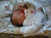 Veronika Paloušová  Narodila se 18. ledna v jablonecké porodnici  mamince Anetě Paloušové z Jablonce nad Jizerou.  Vážila 2,98 kg a měřila 49 cm.