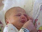 KATEŘINA PIKEŠOVÁ se narodila v úterý 20. června mamince Lucii Boudové z Jablonce nad Nisou. Měřila 51 cm a vážila 3,52 kg.