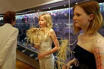 Tajemný svět šamanismu byl tématem již čtvrtého ročníku Muzejní noci.  V neopakovatelné noční atmosféře provázeli v pátek večer návštěvníky Muzea skla a bižuterie v Jablonci žáci Základní školy Liberecká.