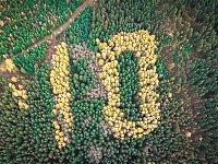 Na Bílém kopci nad Harrachovem září na podzim (k vidění je ale i v zimě) obří desítka. Byla vysázena v roce 1918 jako připomínka 10. výročí vzniku Československa. letos přibude další nula a vznikne tak stovka.