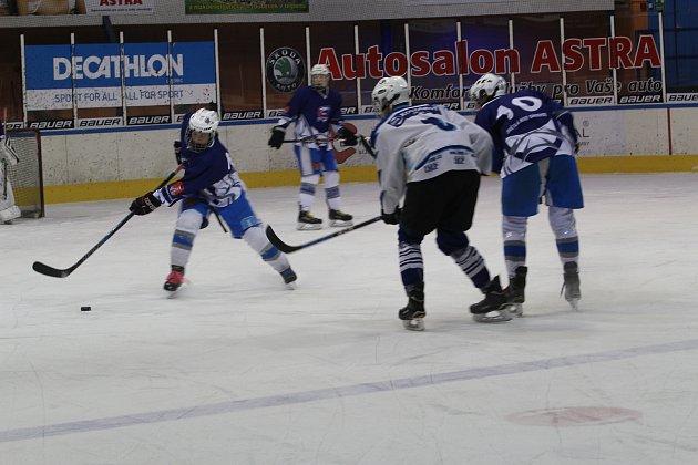 Mladí Vlci jsou v jablonecké v historii nejúspěšnějším týmem mladých hráčů.