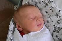 Dominik Horna Narodil se 18. prosince v jablonecké porodnici mamince Gabriele Hornové Ruttové ze Zásady. Vážil 3,335 kg a měřil 49 cm.