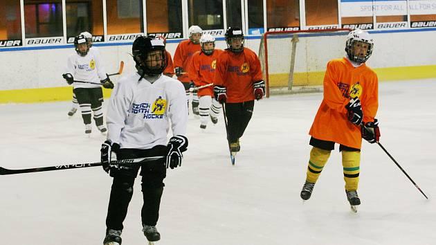 Mládežnická základna HC Vlci je silná, na akci týden Týden hokeje ale další členy uvítají.