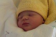 PATRIK PLEŠINGER se narodil ve čtvrtek 30. listopadu v jablonecké porodnici mamince Evě Hübnerové z Albrechtic v Jizerských horách.  Měřil 51 cm a vážil 3,19 kg.
