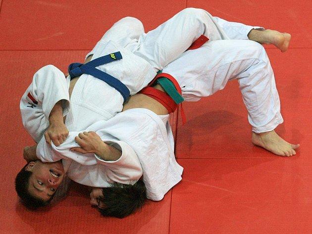 Městská hala v Jablonci nad Nisou hostila ve sváteční den 17. listopadu republikové mistrovství v judu dorosteneckých kategorií. Turnaje se zúčastnilo více jak 150 sportovců z celé republiky.