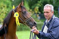 V areálu Jezdeckého klubu Junior v Pavlovicích proběhl VIII. národní šampionát plnokrevných arabských koní.