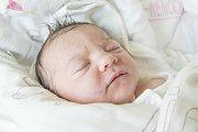NATÁLIE NINA LINKOVÁ se narodila ve středu 12. dubna mamince Christině Mohrové z Huntířova. Měřila 50 cm a vážila 3,71 kg.