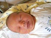 Honzík Pulkrábek se narodil Markétě a Petrovi Pulkrábkovým z Jablonce nad Nisou 18.5.2015. Měřil 51 centimetrů a vážil 3900 g.
