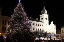 Vánoční strom v Turnově