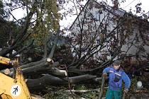 Nápor silného nočního větru nevydržel památný strom v Desné v Jizerských horách.