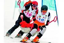 Slalom dvojic záchranářů na loňském 33. ročník Mezinárodní soutěže Horské služby.