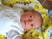 Miroslav Lepeška se narodil Kateřině Lepeškové a Robertovi Lepeškovi Kalistovi z Jablonce dne 8.7.2015. Měřil 51 cm a vážil 3350 g.