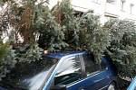 Na Jablonecku padají stromy, na mnoha místech nefunguje elektřina. V Železném Brodě spadl strom na auto.