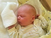 Alois Podařil se Lucii a Pavlovi Podařilovým v jablonecké nemocnici narodil 29.8.2014. Měřil 54 cm a vážil 4580 gramů.