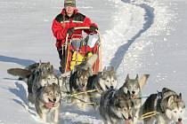Jana Henychová jede se psy nejsevernější závod na tisíc kilometrů Finnmarksløpet 2009. Start 7. března.