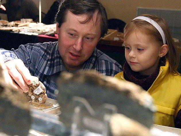 Výstava minerálů bude v Jablonci již po sednadvacáté.