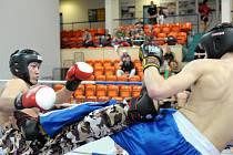 V Jablonci proběhlo klání Národního poháru Čech v kick boxu a fullcontactu. Borec  z pořádajícího oddílu Iron fighters Rádlo Unuruu Onorbaysagalan ( vlevo ) v průběhu svého vítězného zápasu ve fullcontactu do 75 kg.