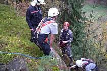 Šest hodin bojovali hasiči o život vlčáka, který spadl do skalní průrvy u Boreckých skal nedaleko Rovenska pod Troskami.