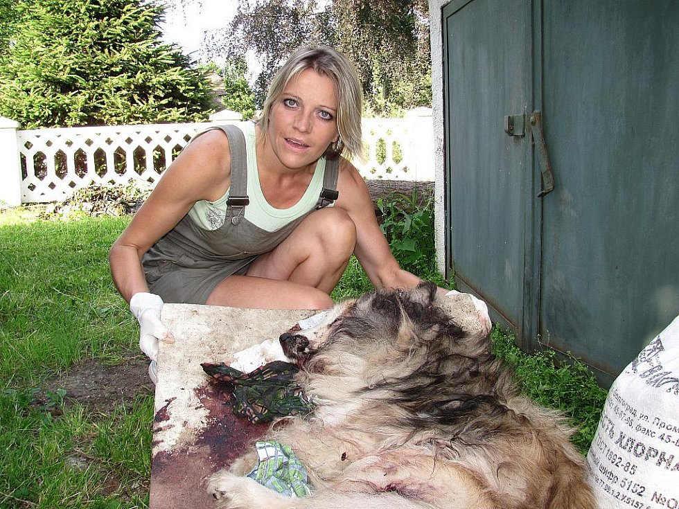 Dvacetiletého psa v noci z pátka na sobotu k smrti ubil zatím neznámý pachatel na zahradě domu v jablonecké čtvrti Kokonín. Podle dostupných informací pes dlouho štěkal. Do věci se zapojili policisté i Liga na ochranu zvířat v čele s Dagmar Kubištovou.