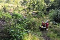 Veronika Kašovičová brala do lesa i své děti, které pomáhaly s odklízením trávy.