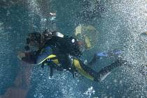 Potápěč ve věži libereckého bazénu