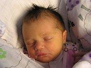 Laura Pánková se narodila Michaele Věchtové a Michalovi Pánkovi z Příšovic 18. 4. 2016. Měřila 47 cm a vážila 3200 g.