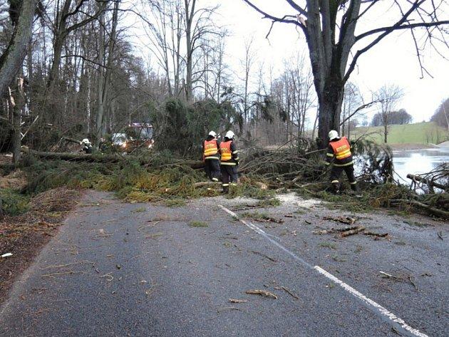 Hasiči likvidují strom padlý na silnici - ilustrační snímek