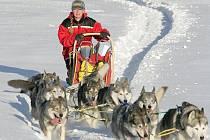 Jana Henychová z Horního Maxova se připravuje na extrémní závod Finnmarksløpet 2010, který startuje 13. března.