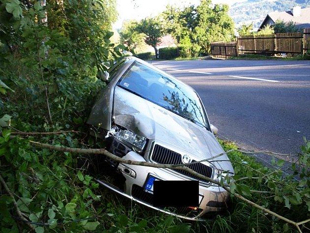 Řidička Škody Fabie údajně havarovala kvůli kočce přebíhající po silnici.