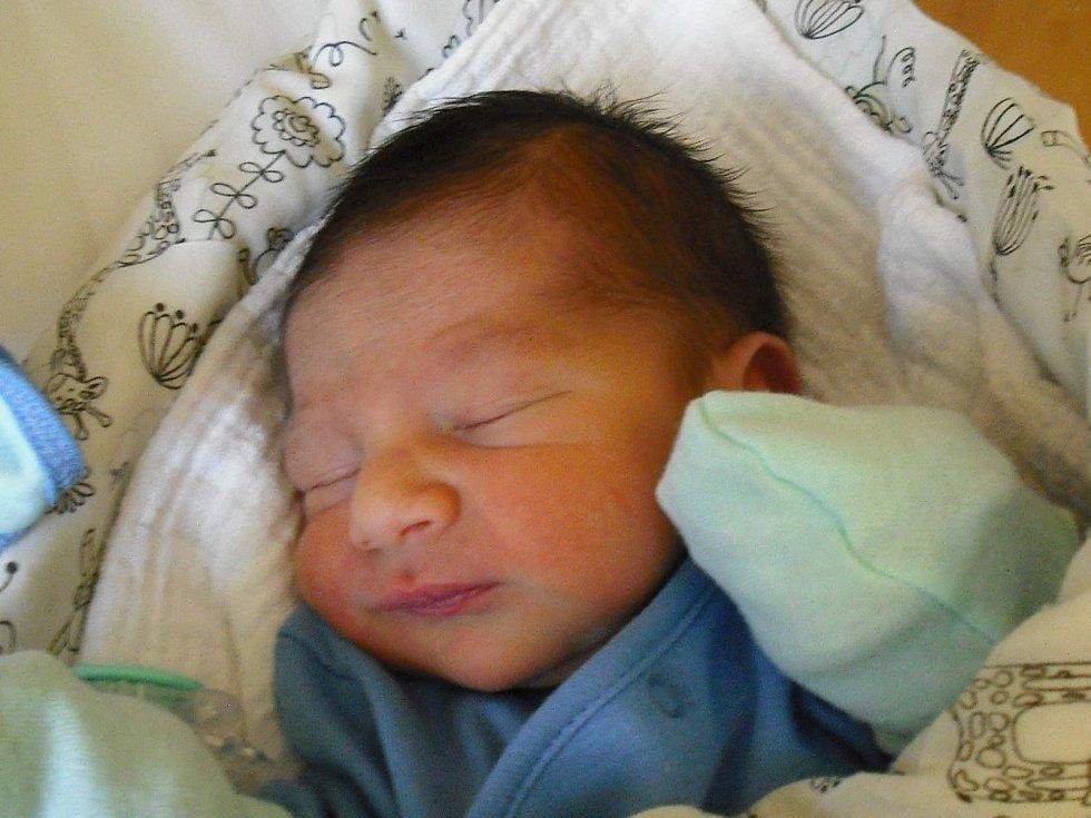 Julius Bendík. Narodil se 1. února v jablonecké porodnici mamince Marcele Bendíkové z Jablonce nad Nisou. Vážil 2,17 kg a měřil 42 cm.
