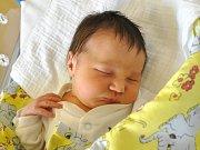 Aneta Vršovská se narodila Markétě a Janovi Vršovským z Plavů 13.4.2015. Měřila 50 cm a vážila 2950 g.
