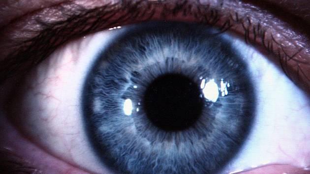 Oko. Ilustrační snímek.
