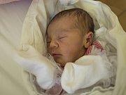 PATRICIE FERKOVÁ se narodila ve čtvrtek 18. května mamince Darině Ferkové z Jablonce nad Nisou. Měřila 45 cm a vážila 2,72 kg.