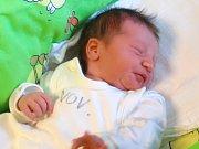 Kryštof Brodský se narodil Evě a Karlovi Brodským z Jablonce nad Nisou 4. 11. 2014. Vážil 2700 g a měřil 48 cm.
